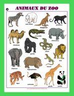 Affiche Animaux du zoo