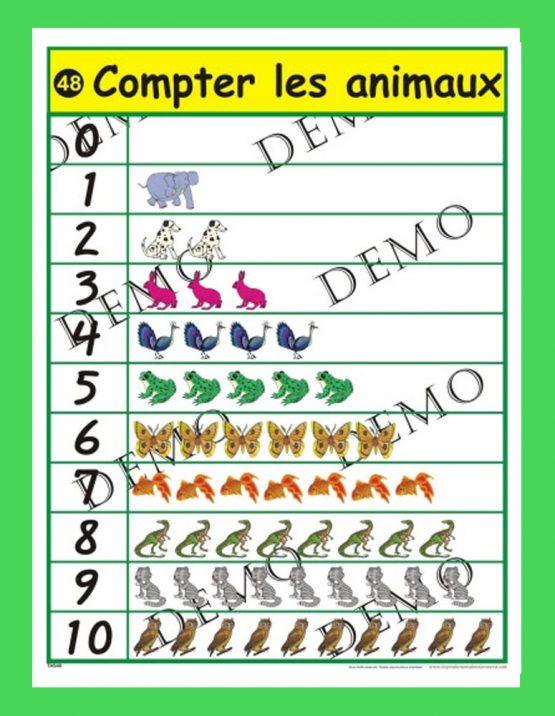 Affiche Compter les animaux