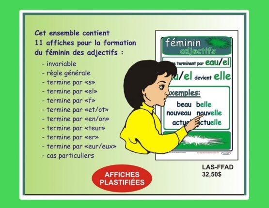 Ensemble affiches des adjectifs au féminin