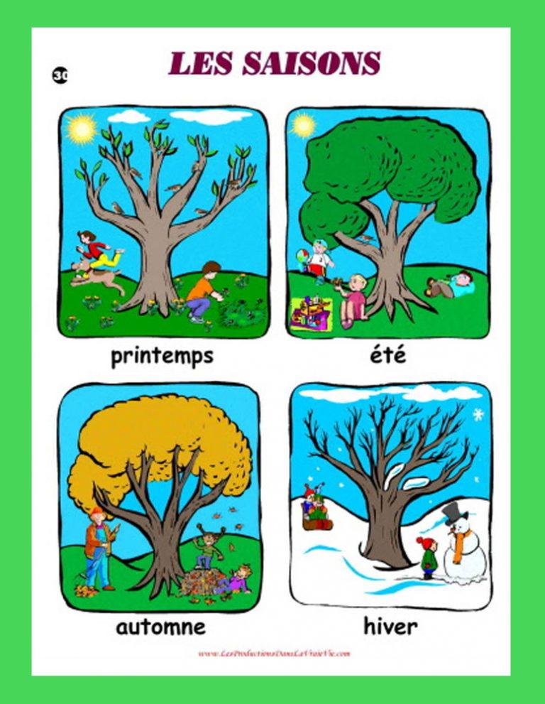 Affiche Les saisons