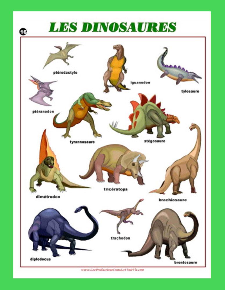 Les dinosaures ressources p dagogiques dans la vraie vie - Liste de dinosaures ...
